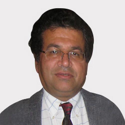 Prof. Hamid Allamehzadeh